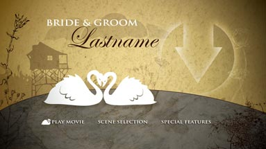 Swan lake Preview